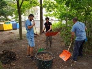 CSR - Grabienie liści