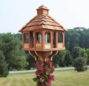 Budowanie domkow dla ptaszków to też CSR